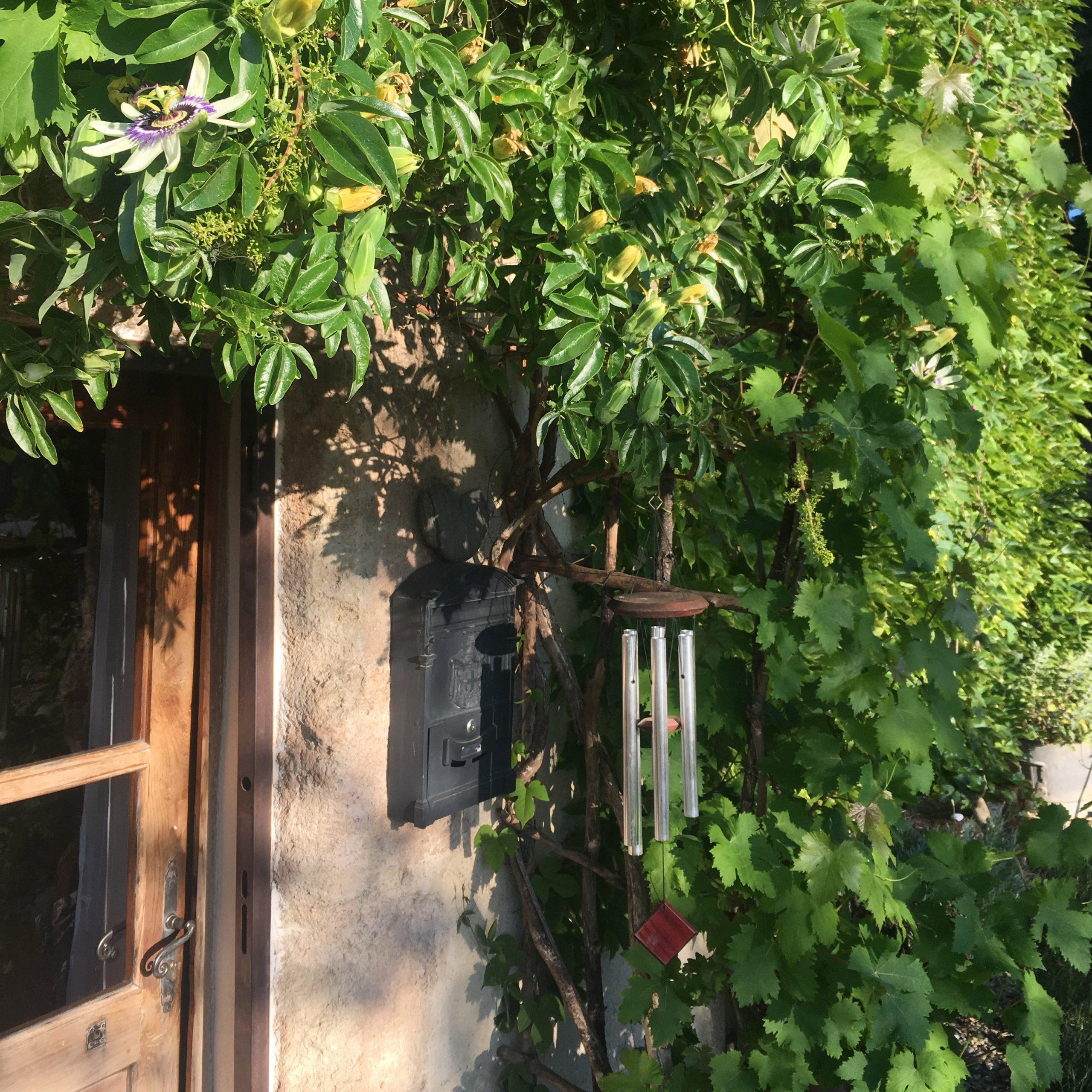 Un gite idéal pour vos vacances dans l'Hérault en harmonie avec la nature