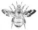 abeille symbole logo mas de villetelle